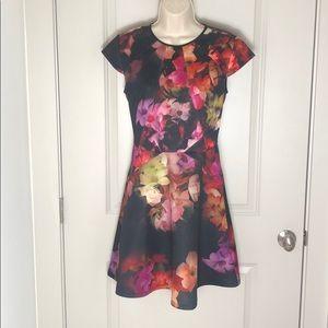 Ted Baker London Floral Short Sleeve Dress